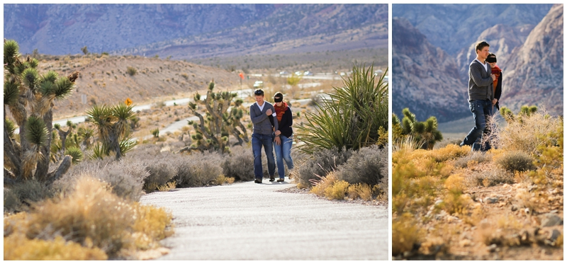 las vegas engagement photos_0235