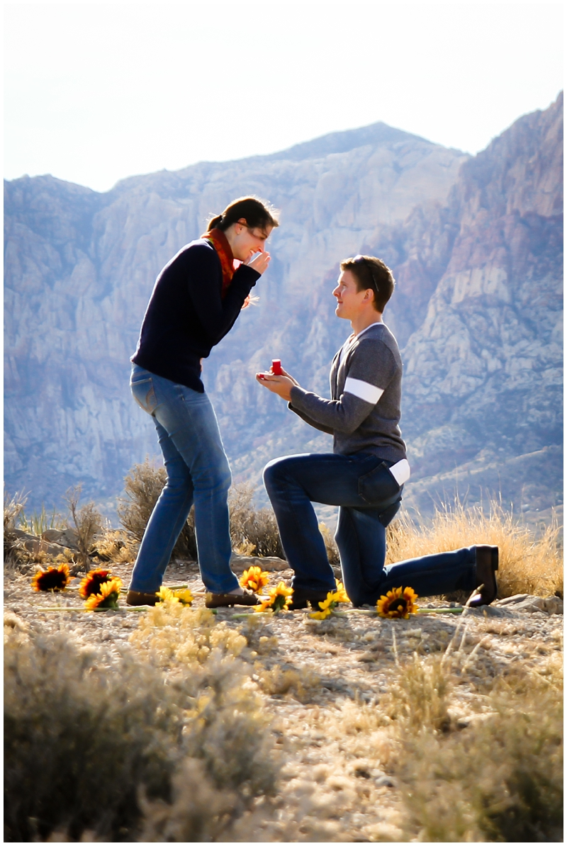 las vegas engagement photos_0244